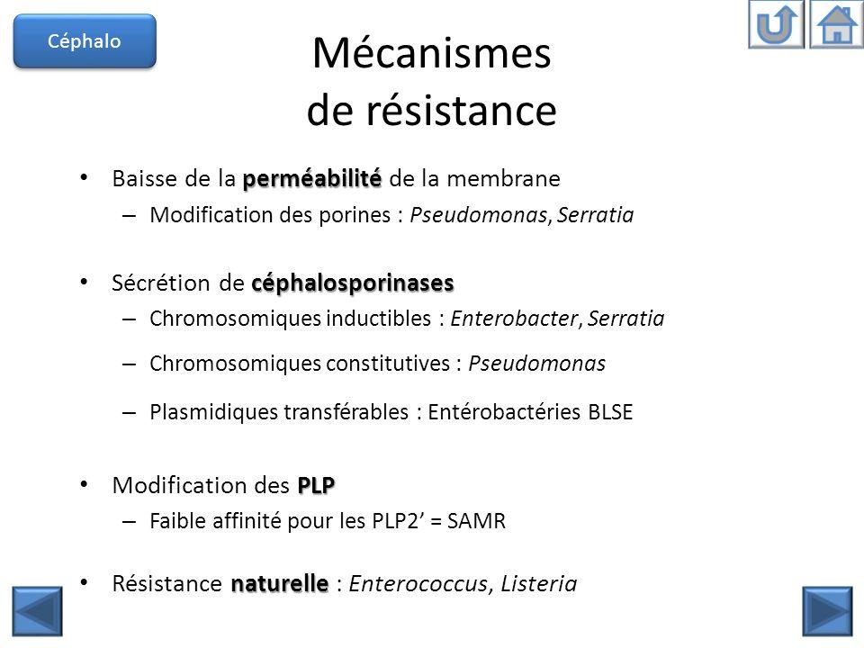 Mécanismes de résistance perméabilité Baisse de la perméabilité de la membrane – Modification des porines : Pseudomonas, Serratia céphalosporinases Sé