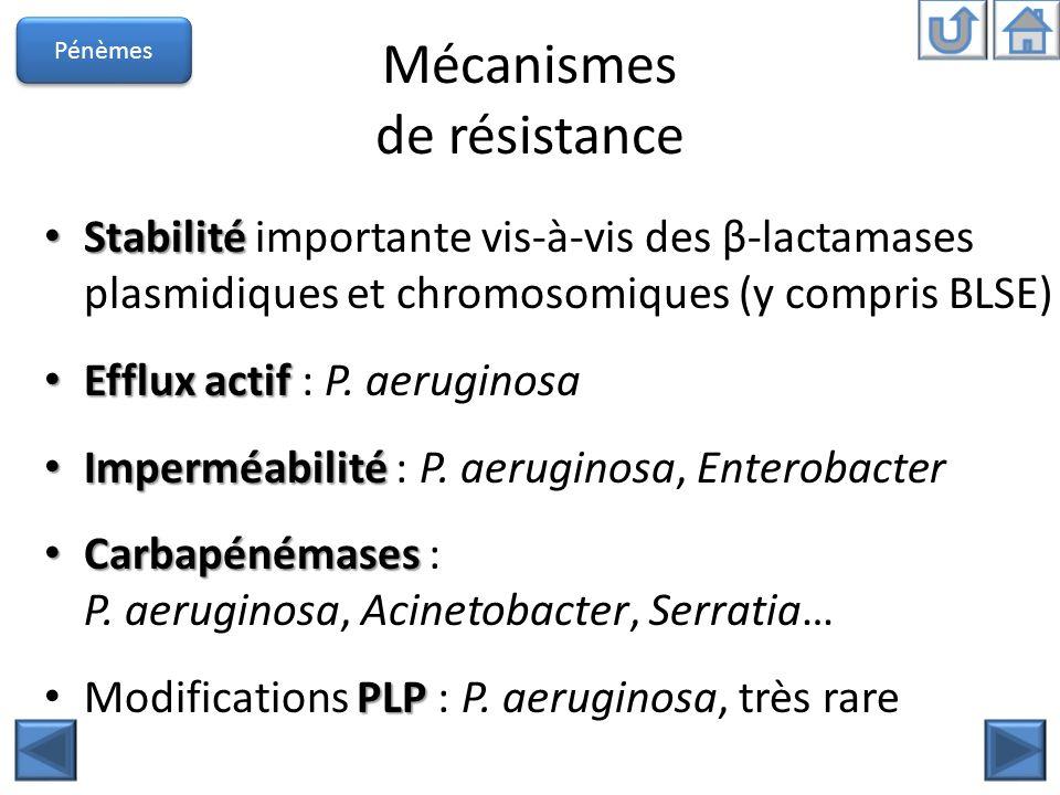 Mécanismes de résistance Stabilité Stabilité importante vis-à-vis des β-lactamases plasmidiques et chromosomiques (y compris BLSE) Efflux actif Efflux