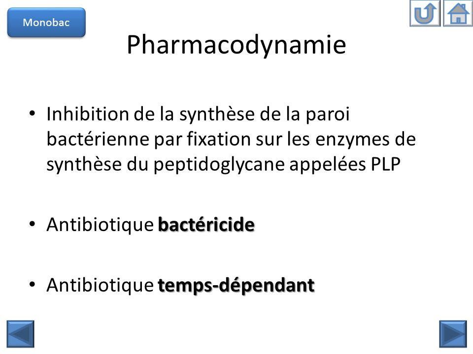 Pharmacodynamie Monobac Inhibition de la synthèse de la paroi bactérienne par fixation sur les enzymes de synthèse du peptidoglycane appelées PLP bact