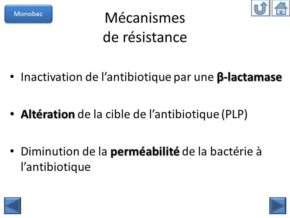 Mécanismes de résistance Monobac β-lactamase Inactivation de lantibiotique par une β-lactamase Altération Altération de la cible de lantibiotique (PLP