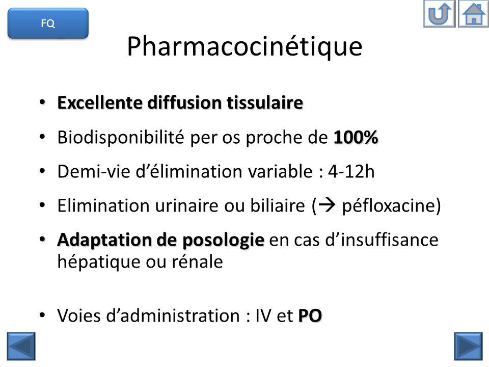 Pharmacocinétique Excellente diffusion tissulaire Excellente diffusion tissulaire 100% Biodisponibilité per os proche de 100% Demi-vie délimination va
