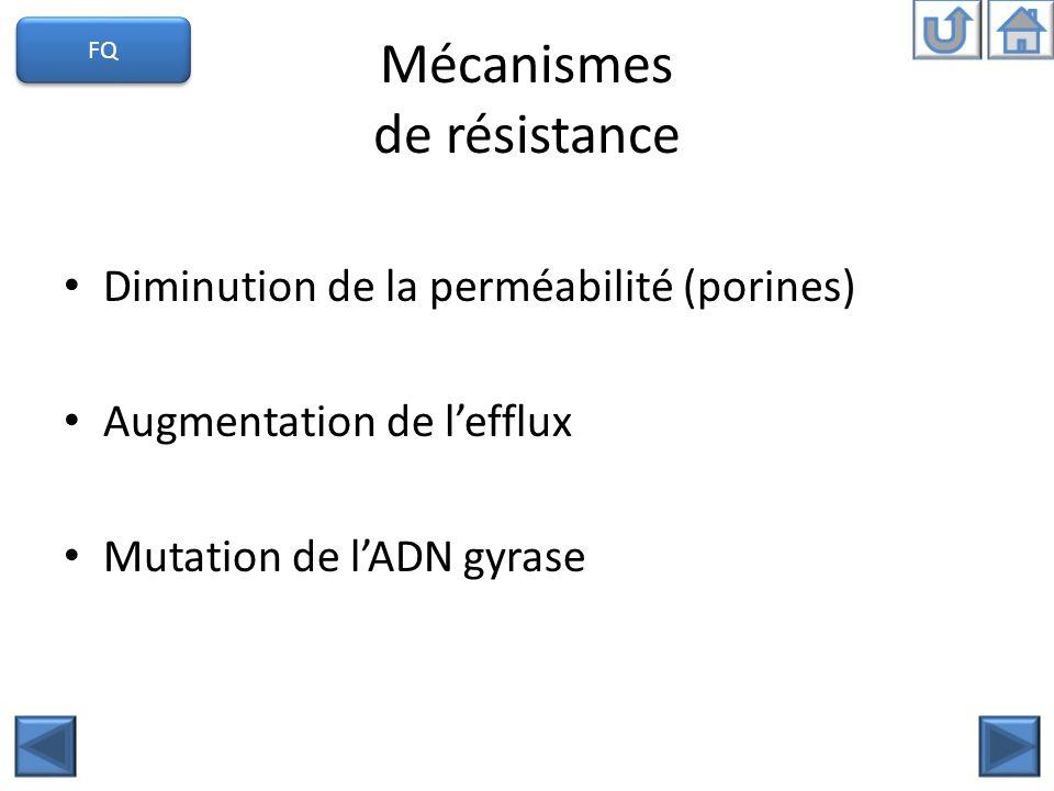 Mécanismes de résistance Diminution de la perméabilité (porines) Augmentation de lefflux Mutation de lADN gyrase FQ