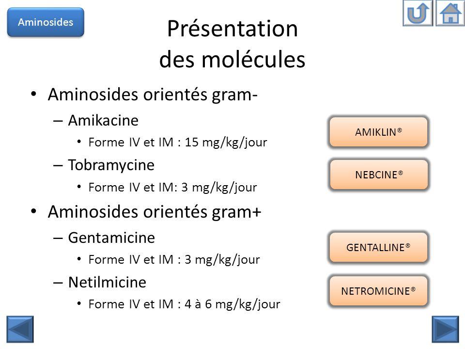 Présentation des molécules Aminosides orientés gram- – Amikacine Forme IV et IM : 15 mg/kg/jour – Tobramycine Forme IV et IM: 3 mg/kg/jour Aminosides