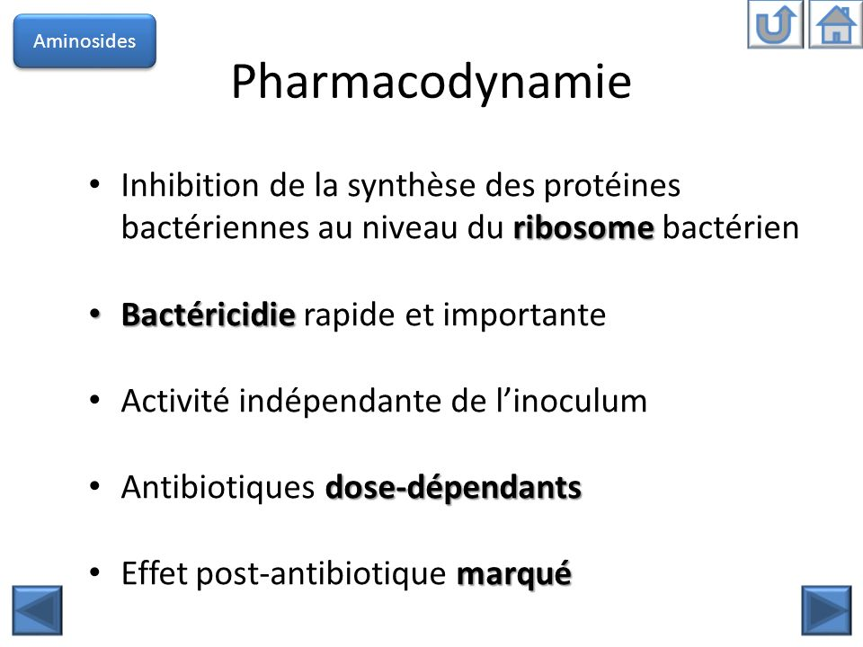 Pharmacodynamie ribosome Inhibition de la synthèse des protéines bactériennes au niveau du ribosome bactérien Bactéricidie Bactéricidie rapide et impo