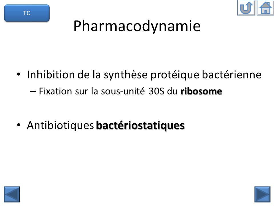 Pharmacodynamie Inhibition de la synthèse protéique bactérienne ribosome – Fixation sur la sous-unité 30S du ribosome bactériostatiques Antibiotiques