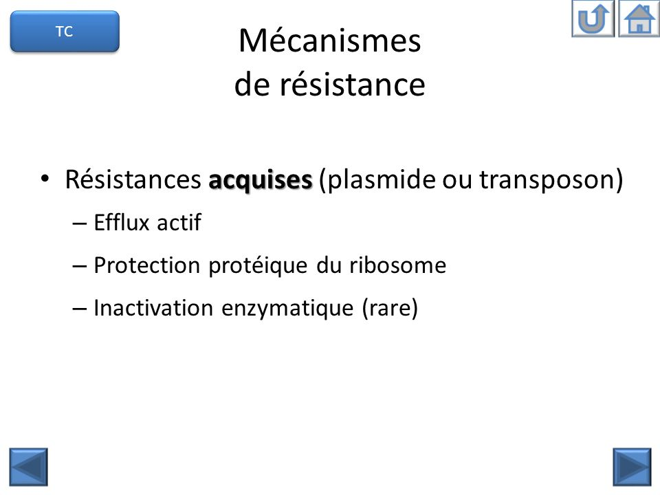 Mécanismes de résistance acquises Résistances acquises (plasmide ou transposon) – Efflux actif – Protection protéique du ribosome – Inactivation enzymatique (rare) TC