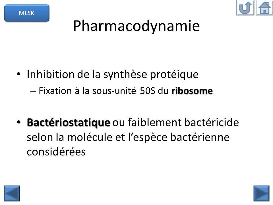 Pharmacodynamie Inhibition de la synthèse protéique ribosome – Fixation à la sous-unité 50S du ribosome Bactériostatique Bactériostatique ou faiblemen