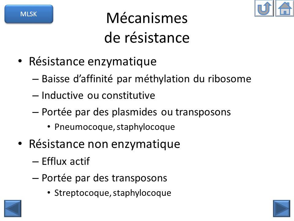 Mécanismes de résistance Résistance enzymatique – Baisse daffinité par méthylation du ribosome – Inductive ou constitutive – Portée par des plasmides