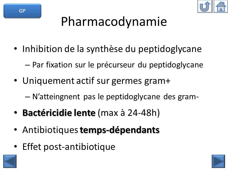 Pharmacodynamie Inhibition de la synthèse du peptidoglycane – Par fixation sur le précurseur du peptidoglycane Uniquement actif sur germes gram+ – Nat