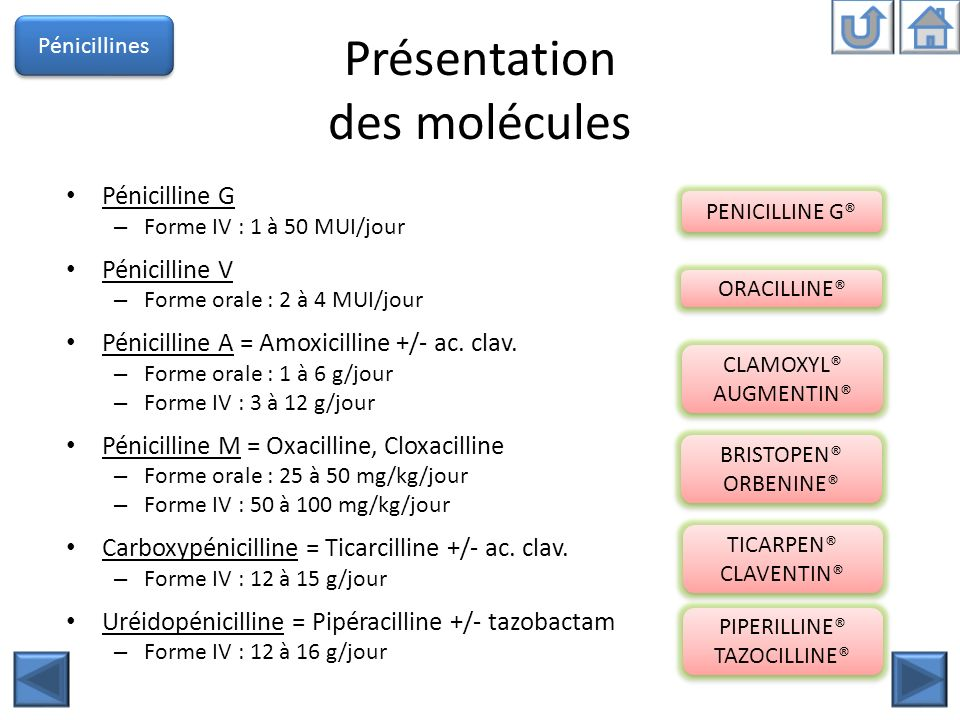 Présentation des molécules Pénicilline G – Forme IV : 1 à 50 MUI/jour Pénicilline V – Forme orale : 2 à 4 MUI/jour Pénicilline A = Amoxicilline +/- ac