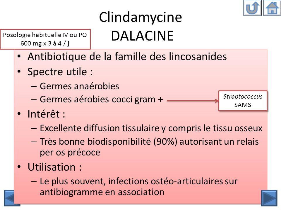 Clindamycine DALACINE Antibiotique de la famille des lincosanides Spectre utile : – Germes anaérobies – Germes aérobies cocci gram + Intérêt : – Excel