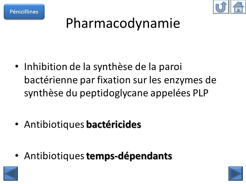 Pharmacocinétique Les concentrations sériques sont peu différentes des concentrations tissulaires lœil, le SNC, la prostate Diffusent mal dans lœil, le SNC, la prostate rénale ou biliaire Lexcrétion est rénale ou biliaire selon les molécules répétées Demi-vie courte administrations répétées Voies dadministration – IV, IM, PO Pénicillines