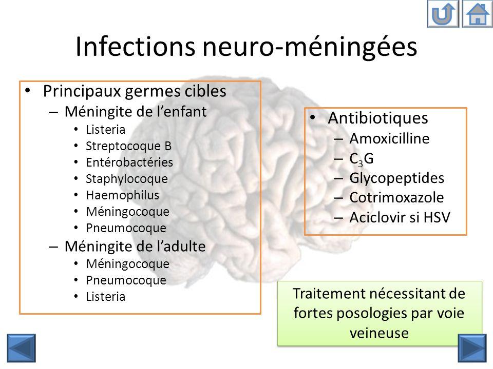 Infections neuro-méningées Principaux germes cibles – Méningite de lenfant Listeria Streptocoque B Entérobactéries Staphylocoque Haemophilus Méningoco