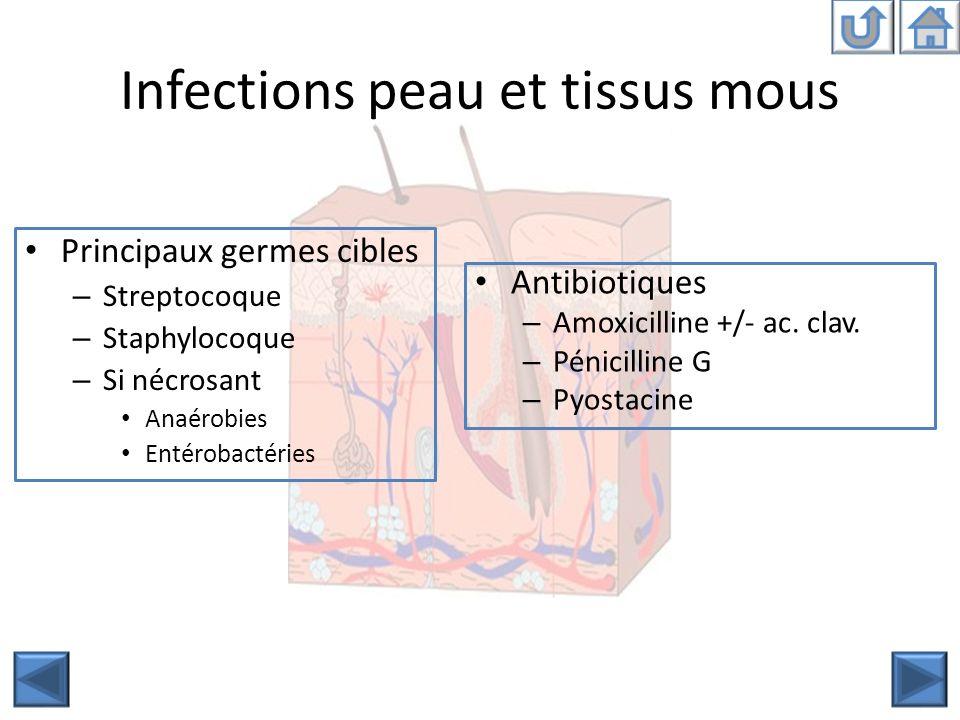 Infections peau et tissus mous Principaux germes cibles – Streptocoque – Staphylocoque – Si nécrosant Anaérobies Entérobactéries Antibiotiques – Amoxi