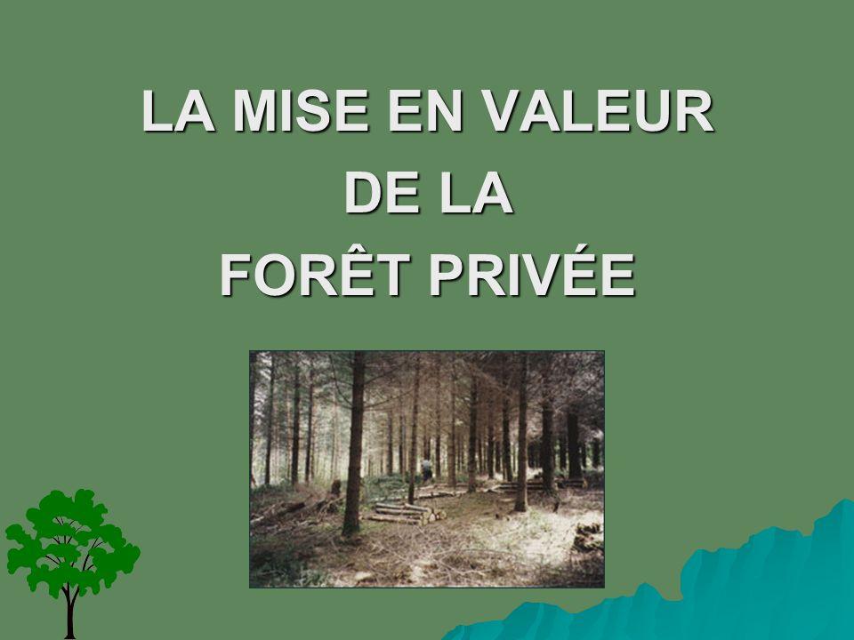 LA MISE EN VALEUR DE LA FORÊT PRIVÉE