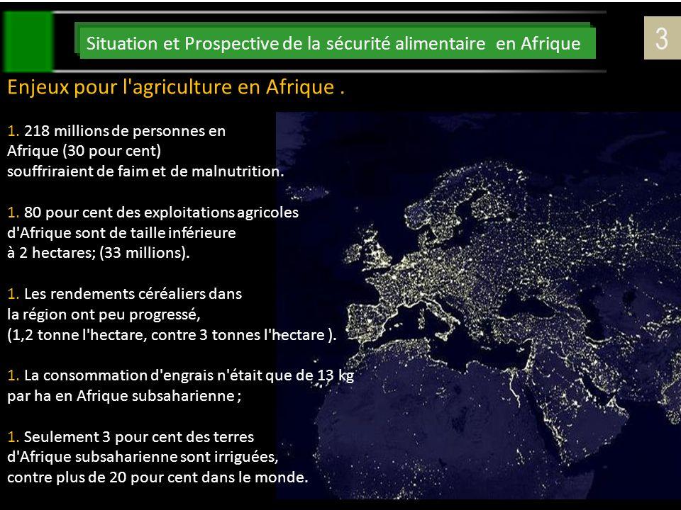 Situation et Prospective de la sécurité alimentaire en Afrique 3 Enjeux pour l'agriculture en Afrique. 1.218 millions de personnes en Afrique (30 pour