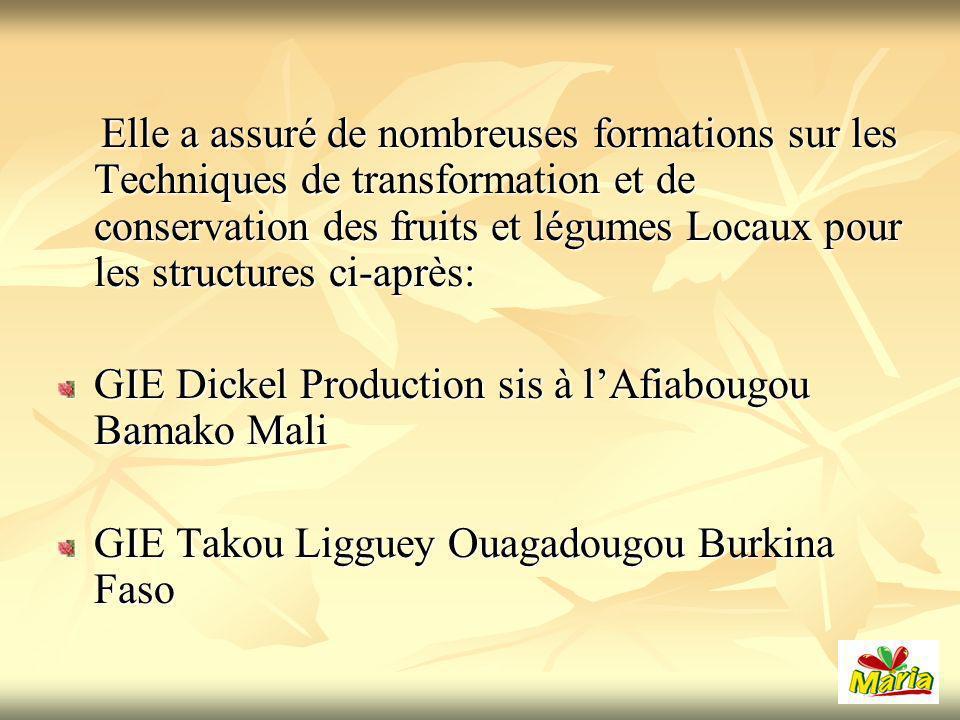 Elle a assuré de nombreuses formations sur les Techniques de transformation et de conservation des fruits et légumes Locaux pour les structures ci-après: Elle a assuré de nombreuses formations sur les Techniques de transformation et de conservation des fruits et légumes Locaux pour les structures ci-après: GIE Dickel Production sis à lAfiabougou Bamako Mali GIE Takou Ligguey Ouagadougou Burkina Faso