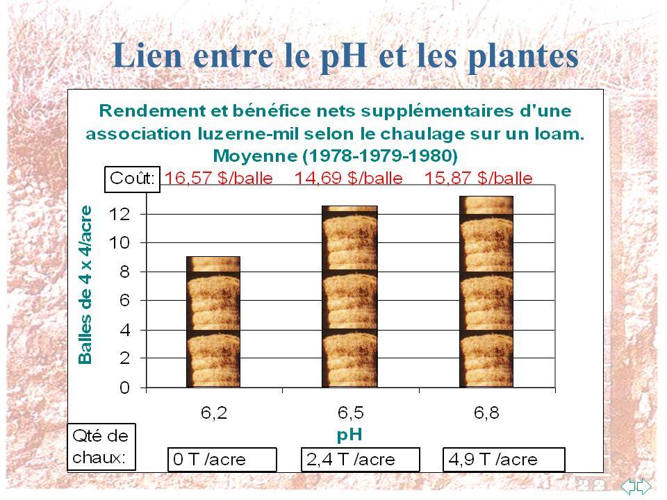Lien entre le pH et les microorganismes du sol Champignons Bactéries