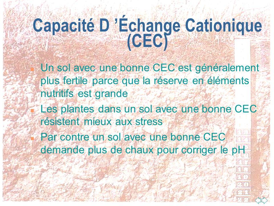 Capacité D Échange Cationique (CEC) n Cest la capacité du sol à retenir les ions chargés positivement présents dans l eau du sol (hydrogène, potassium