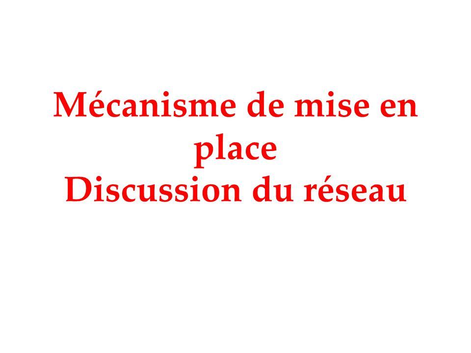 Mécanisme de mise en place Discussion du réseau