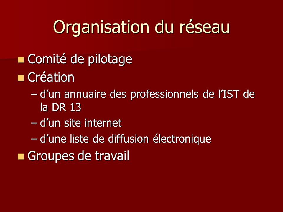 Organisation du réseau Comité de pilotage Comité de pilotage Création Création –dun annuaire des professionnels de lIST de la DR 13 –dun site internet –dune liste de diffusion électronique Groupes de travail Groupes de travail