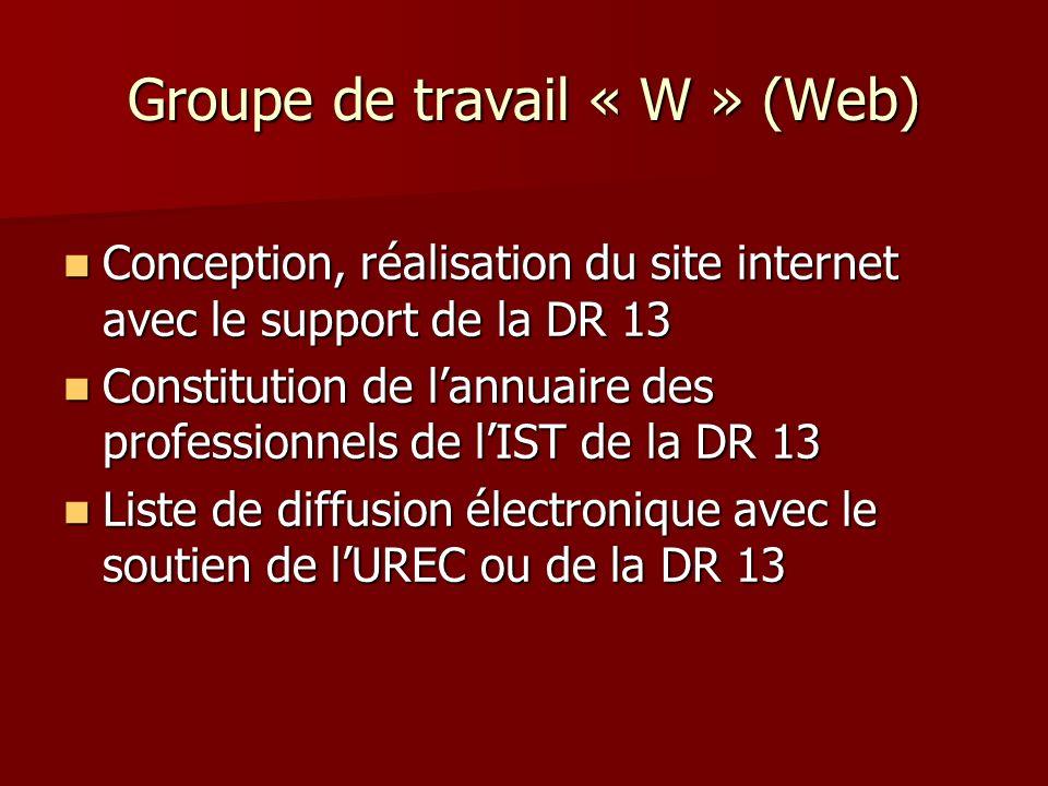 Groupe de travail « W » (Web) Conception, réalisation du site internet avec le support de la DR 13 Conception, réalisation du site internet avec le support de la DR 13 Constitution de lannuaire des professionnels de lIST de la DR 13 Constitution de lannuaire des professionnels de lIST de la DR 13 Liste de diffusion électronique avec le soutien de lUREC ou de la DR 13 Liste de diffusion électronique avec le soutien de lUREC ou de la DR 13