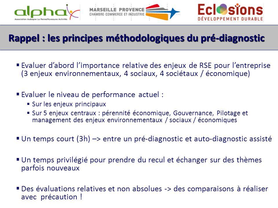 Rappel : les principes méthodologiques du pré-diagnostic Evaluer dabord limportance relative des enjeux de RSE pour lentreprise (3 enjeux environnemen