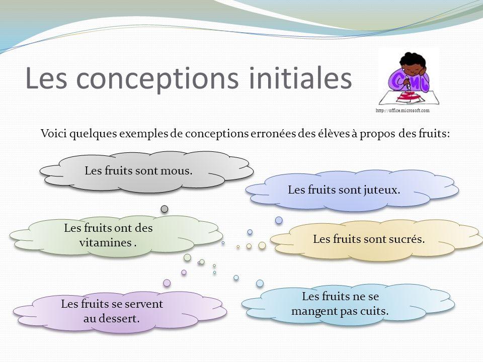 Les conceptions initiales Voici quelques exemples de conceptions erronées des élèves à propos des fruits: Les fruits sont juteux.