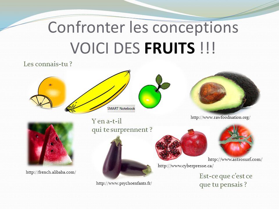 Confronter les conceptions VOICI DES FRUITS !!. Est-ce que cest ce que tu pensais .