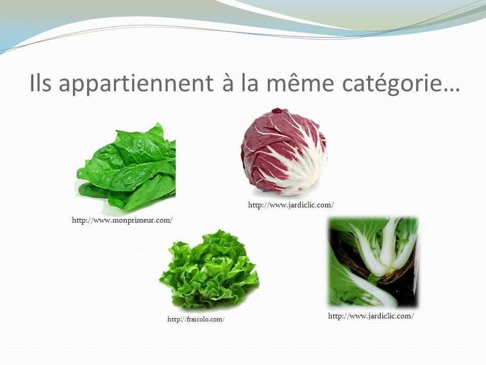 Ils appartiennent à la même catégorie… http://www.monprimeur.com/http://www.jardiclic.com/ http://fraicolo.com/ http://www.jardiclic.com/