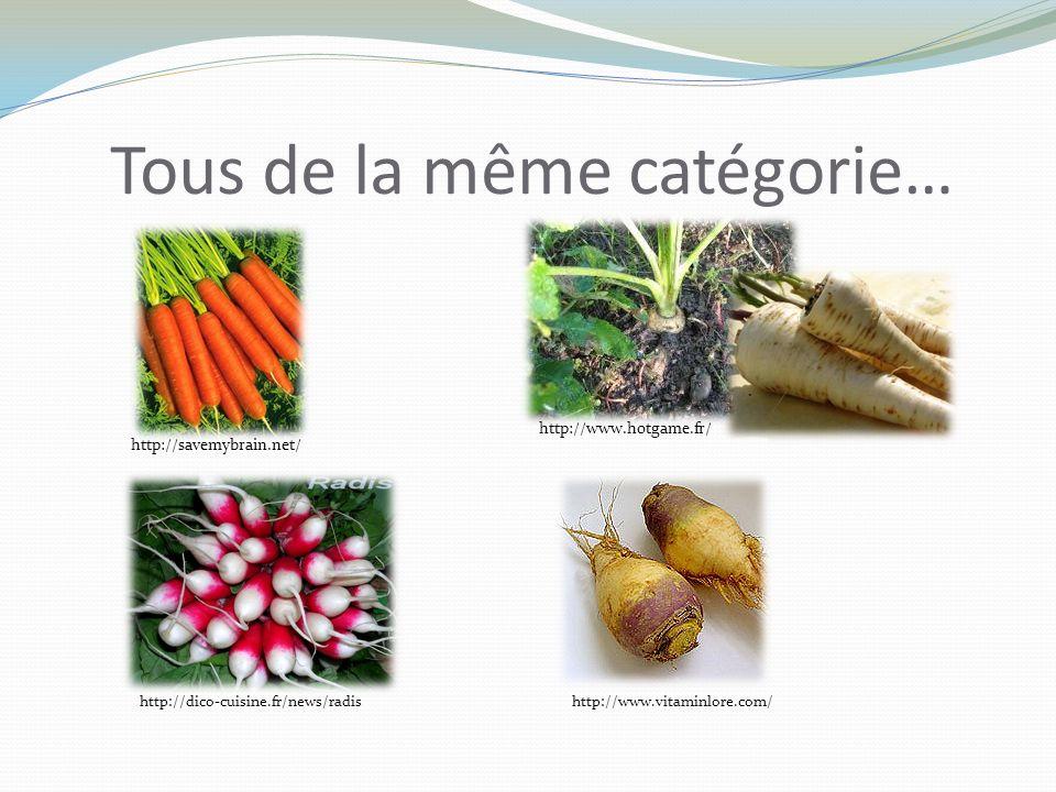 Tous de la même catégorie… http://savemybrain.net/ http://www.hotgame.fr/ http://www.vitaminlore.com/http://dico-cuisine.fr/news/radis