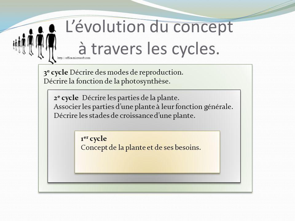 Des plantes qui appartiennent à la même catégorie: http://www.easyfrenchcook.fr/ http://www.fondation-louisbonduelle.org/france/fr/ http://jardino.e-monsite.com/ La tarte à la rhubarbe http://www.750g.com/