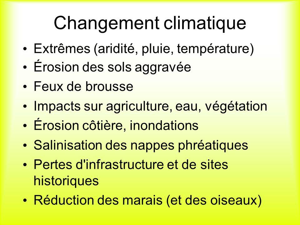 Changement climatique Extrêmes (aridité, pluie, température) Érosion des sols aggravée Feux de brousse Impacts sur agriculture, eau, végétation Érosio