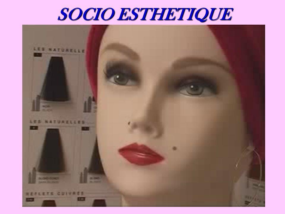 SOCIO ESTHETIQUE