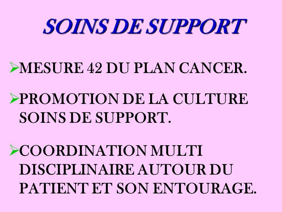 SOINS DE SUPPORT MESURE 42 DU PLAN CANCER. PROMOTION DE LA CULTURE SOINS DE SUPPORT. COORDINATION MULTI DISCIPLINAIRE AUTOUR DU PATIENT ET SON ENTOURA