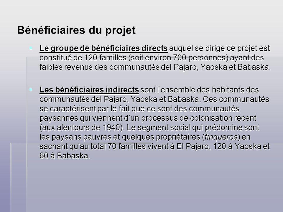 Bénéficiaires du projet Le groupe de bénéficiaires directs auquel se dirige ce projet est constitué de 120 familles (soit environ 700 personnes) ayant des faibles revenus des communautés del Pajaro, Yaoska et Babaska.