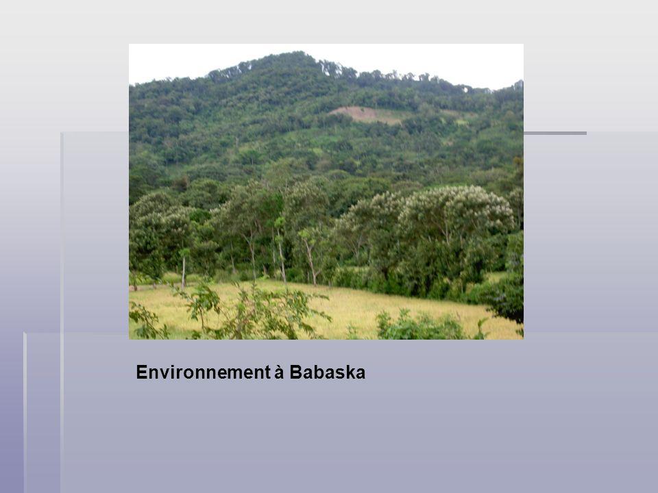Environnement à Babaska