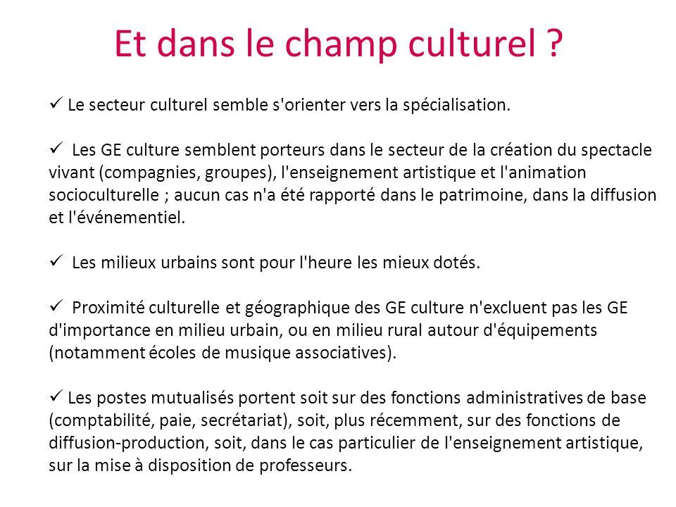 Et dans le champ culturel ? Le secteur culturel semble s'orienter vers la spécialisation. Les GE culture semblent porteurs dans le secteur de la créat