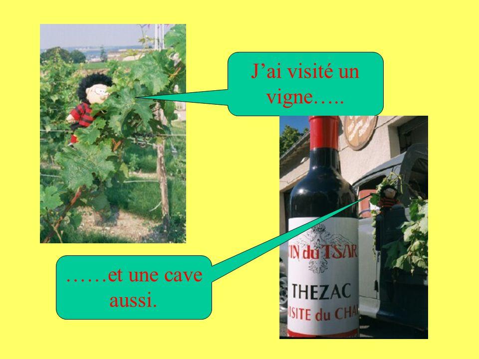 Cahors Jai loué un gîte près de Cahors…. … dans le sud- ouest de la France.
