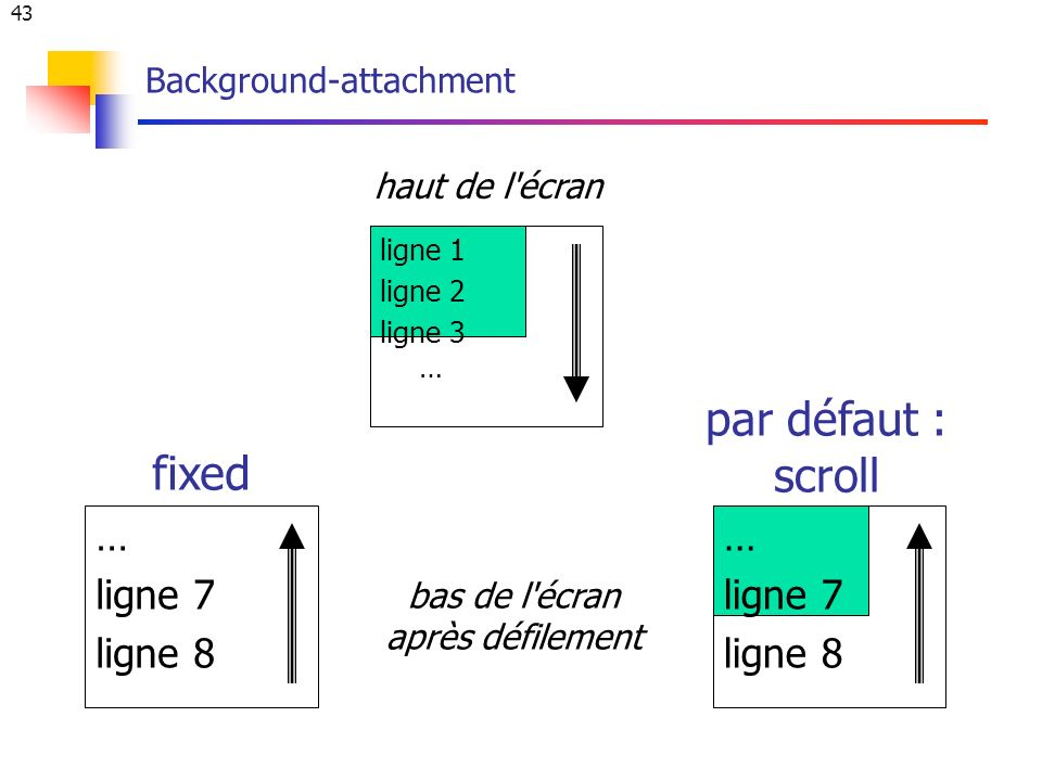 43 Background-attachment ligne 1 ligne 2 ligne 3 … … ligne 7 ligne 8 fixed par défaut : scroll haut de l écran bas de l écran après défilement … ligne 7 ligne 8