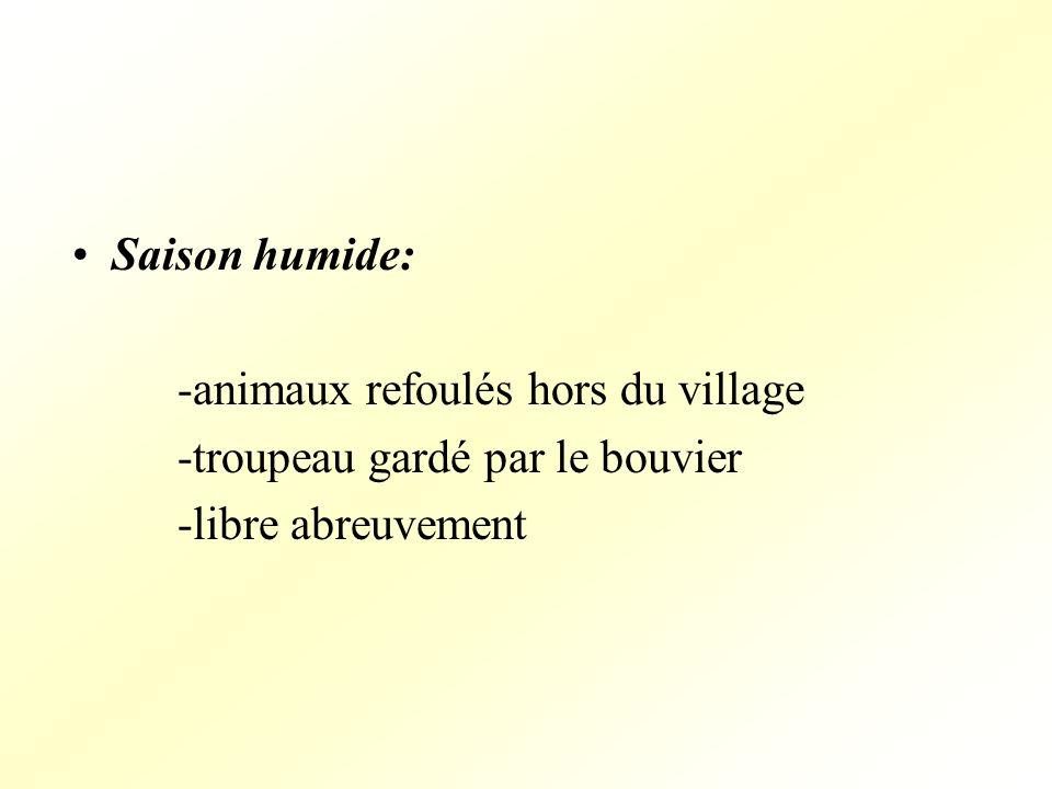 Saison humide: -animaux refoulés hors du village -troupeau gardé par le bouvier -libre abreuvement