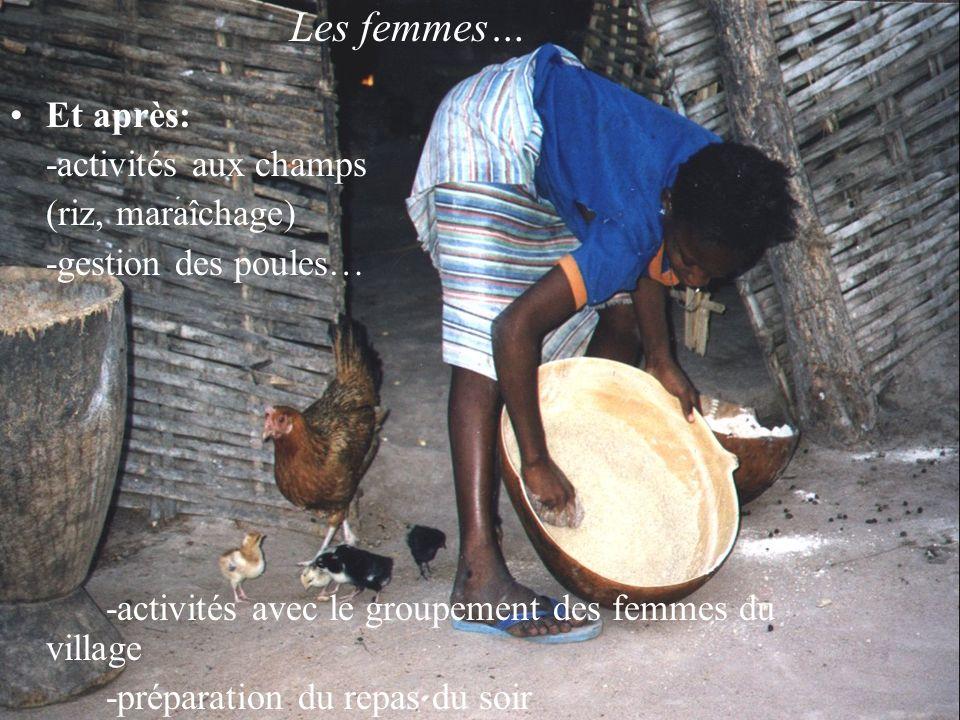 Les femmes… Et après: -activités aux champs (riz, maraîchage) -gestion des poules… -activités avec le groupement des femmes du village -préparation du repas du soir