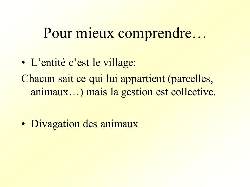 Pour mieux comprendre… Lentité cest le village: Chacun sait ce qui lui appartient (parcelles, animaux…) mais la gestion est collective.
