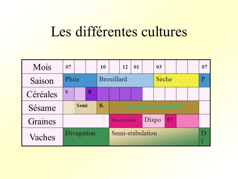 Les différentes cultures Mois 071012010307 Saison PluieBrouillardSècheP.