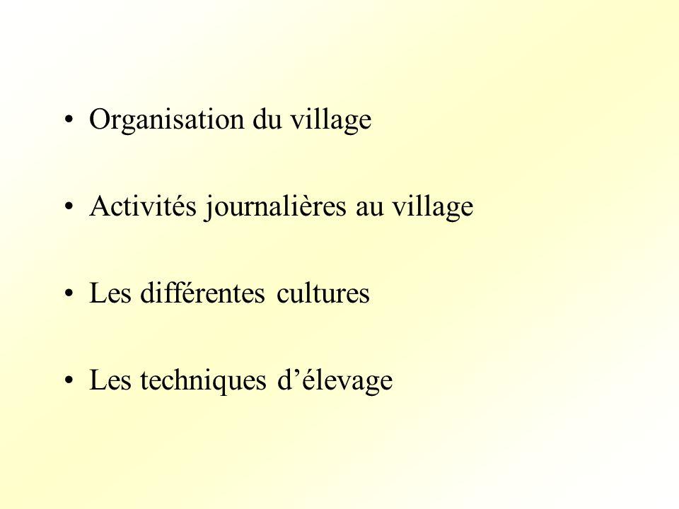 Organisation du village Activités journalières au village Les différentes cultures Les techniques délevage