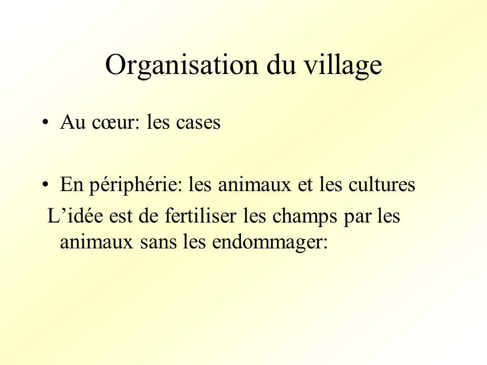 Organisation du village Au cœur: les cases En périphérie: les animaux et les cultures Lidée est de fertiliser les champs par les animaux sans les endommager: