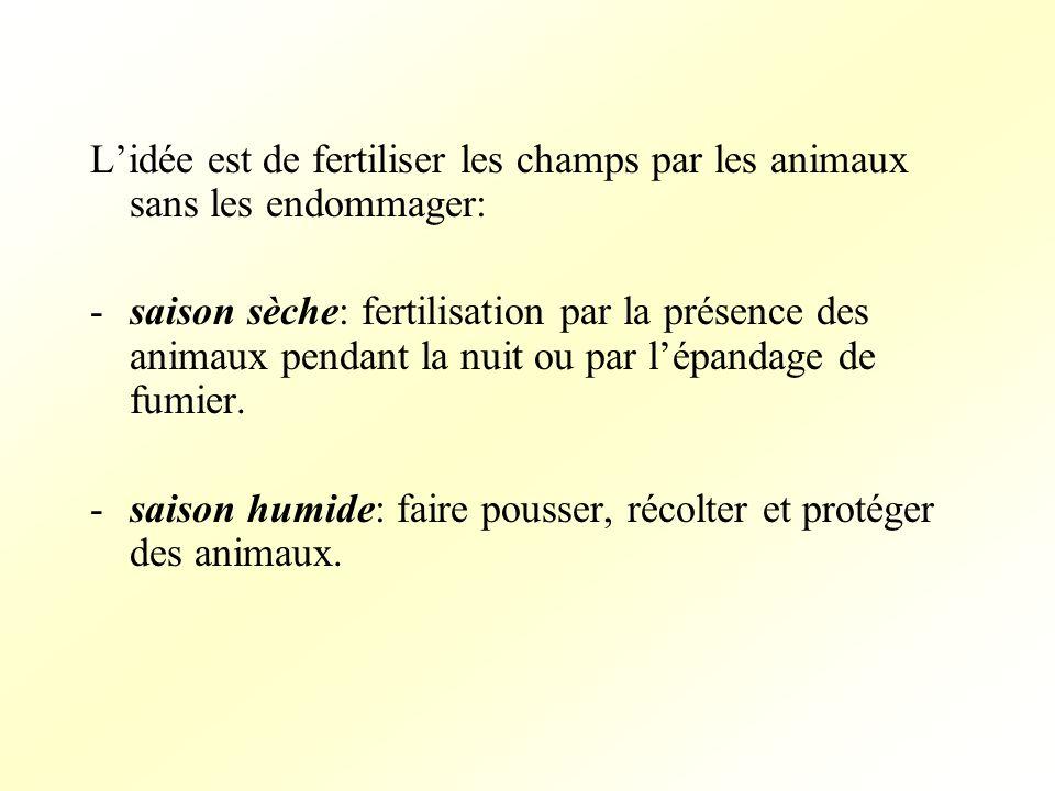 -saison sèche: fertilisation par la présence des animaux pendant la nuit ou par lépandage de fumier.
