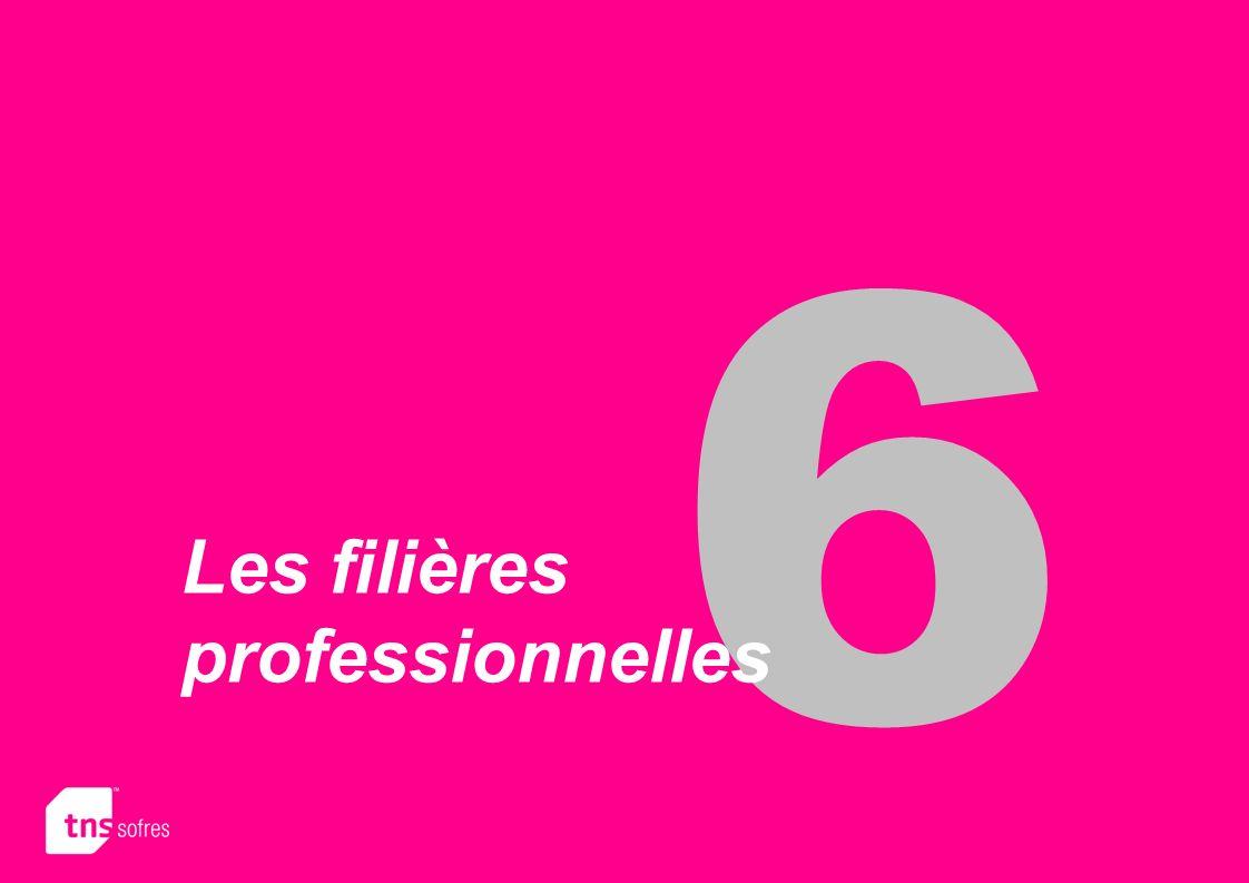 6 Les filières professionnelles