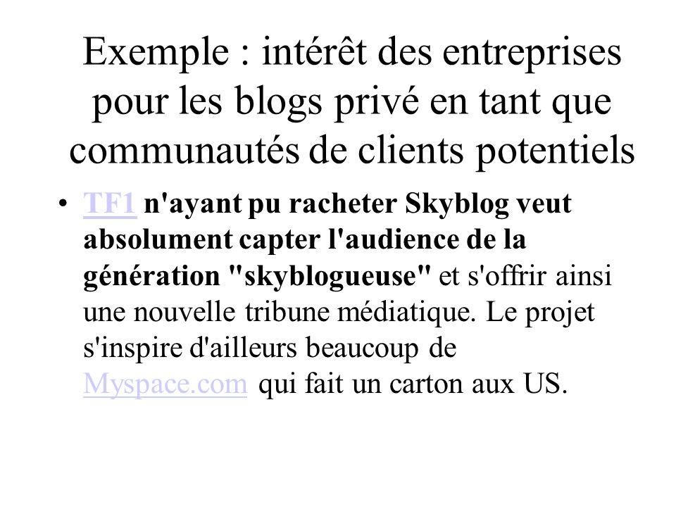 Exemple : intérêt des entreprises pour les blogs privé en tant que communautés de clients potentiels TF1 n ayant pu racheter Skyblog veut absolument capter l audience de la génération skyblogueuse et s offrir ainsi une nouvelle tribune médiatique.