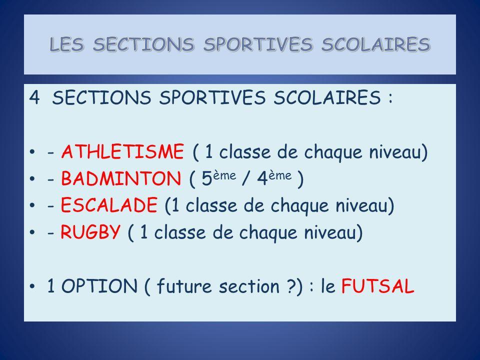 4 SECTIONS SPORTIVES SCOLAIRES : - ATHLETISME ( 1 classe de chaque niveau) - BADMINTON ( 5 ème / 4 ème ) - ESCALADE (1 classe de chaque niveau) - RUGBY ( 1 classe de chaque niveau) 1 OPTION ( future section ) : le FUTSAL